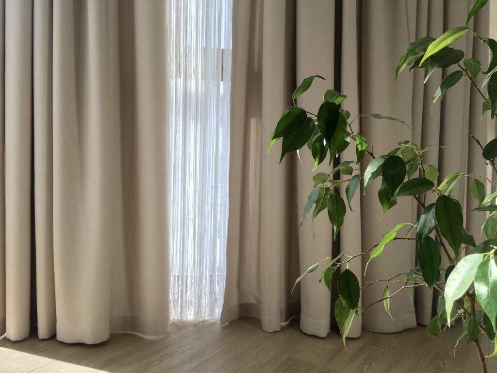 beige gordijnen die de grond raken met een plooi in en ook glasgordijnen, daarnaast een plant